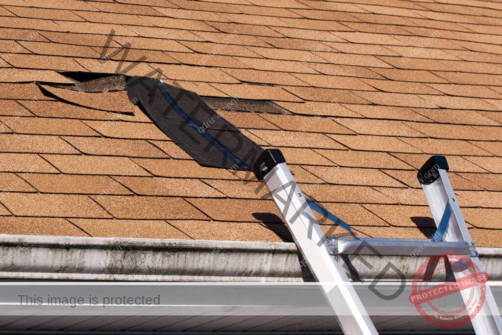 Here Are The 7 Roof Damages You Should Look Out For